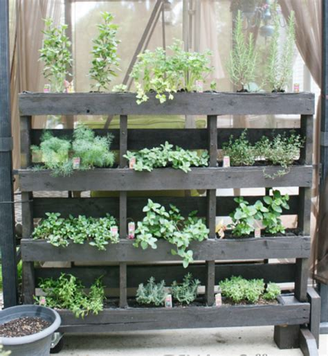 How To Make A Vertical Pallet Herb Garden by Vertical Herb Garden Ideas Plantinfo Everything And