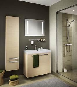 Store Salle De Bain : salle de bains les tendances 2015 ~ Edinachiropracticcenter.com Idées de Décoration