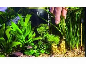 Aquarium Bodengrund Berechnen : alles rund um aquarium technik ~ Themetempest.com Abrechnung