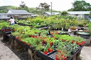 Garden Of Zalman Silber A Home And Garden Blog By Zalman