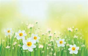 White flowers spring beautiful background vector - WeLoveSoLo