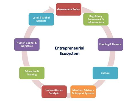 entrepreneurial ecosystems   role  government policy