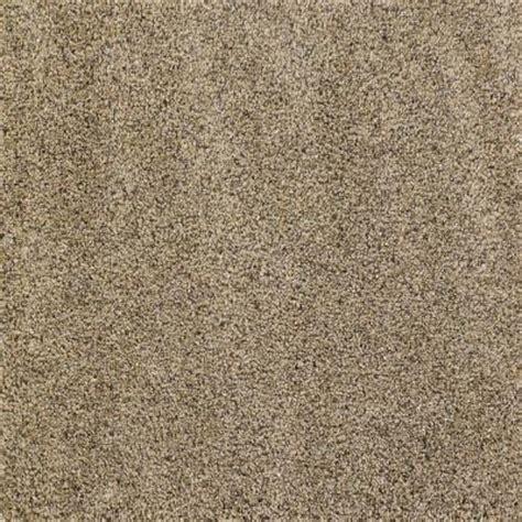 Hypoallergenic Carpet Home Depot by Hypoallergenic Carpet Carpet Vidalondon