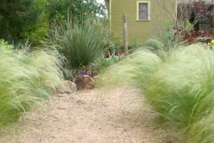 Decorative Landscaping with Ornamental Grass