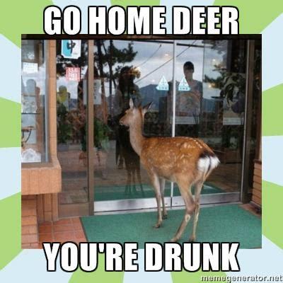 Funny Deer Memes - best of the go home you re drunk meme smosh