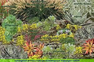 Faire Un Parterre De Galets : cr er un jardin de plantes grasses jardin de succulentes ~ Dailycaller-alerts.com Idées de Décoration