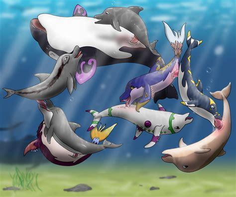 Rule 34 Bisexual Cetacean Cunnilingus Dolphin