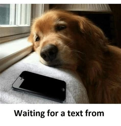 Waiting For Text Meme - waiting for a text from meme on sizzle