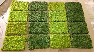 Mooswand Selber Bauen : mooswand selber bauen freund gmbh moosgreen flexible moosbilder selber machen easymoos moosw ~ Eleganceandgraceweddings.com Haus und Dekorationen