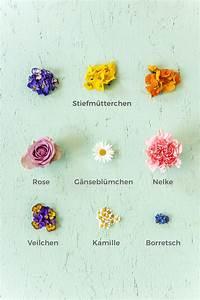 Welche Blumen Kann Man Essen : essbare bl ten liste unsere lieblingsbl ten hellofresh blog ~ Watch28wear.com Haus und Dekorationen