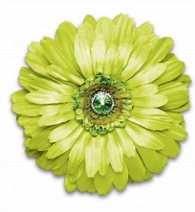 Lime Green Flower Magnetic Lime Green Locker #N1mSJI ...