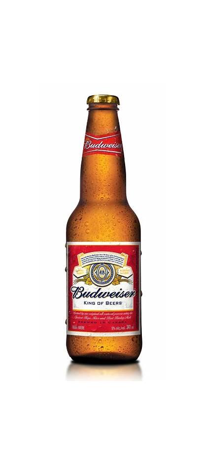 Budweiser Clipart Beer Budwiser Bottle Clip Alcohol