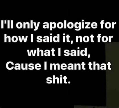 Sorry Quotes Funny
