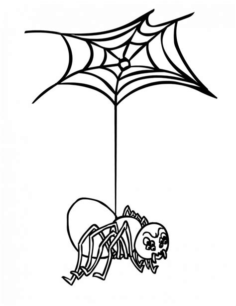 spider web outline    clipartmag