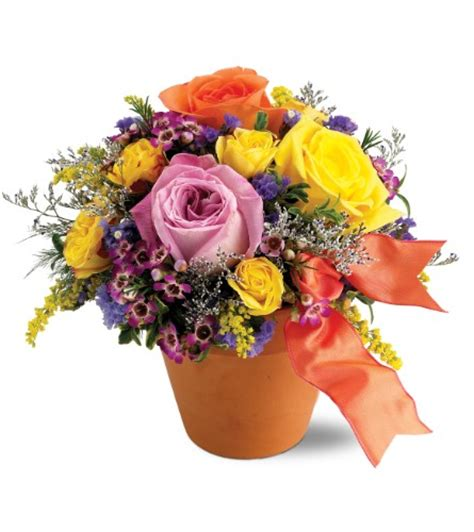 get well flowers delivery granite bay roseville ca