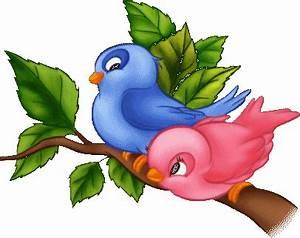 Gifs animados de Aves varias, animaciones de Aves varias