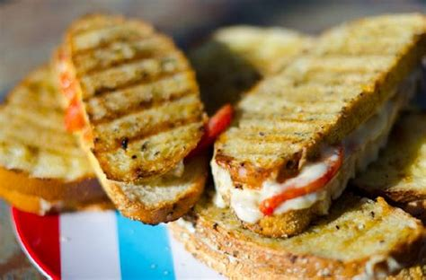 grilled cheese recipes grilling companion