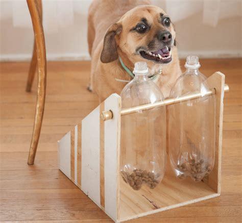 shoing pour chien fait maison 28 images le choix de la niche ce n est pas une mince affaire