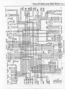 Diagram Yamaha Radian Wiring Diagram Full Version Hd Quality Wiring Diagram Akelivre Vonvidocq De