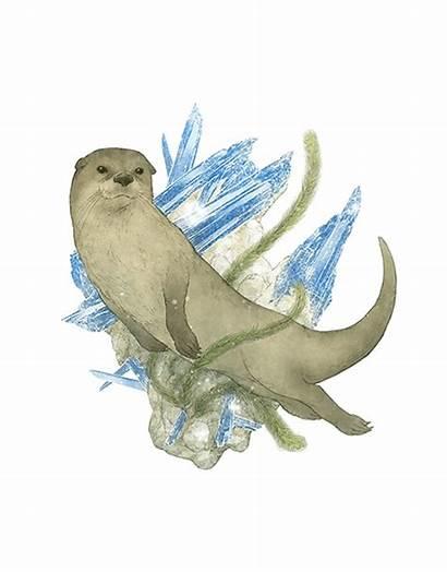 Hare Hummingbird Fantasy Aragonite Otter Turtle Sea