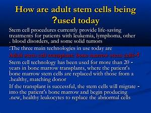 Stem cells basics and ethical issues