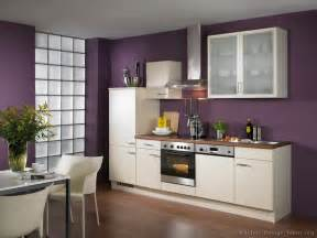 Kitchen Idea Cream Cabinet Home Design Roosa Modern Kitchen Paint Colors With Oak Cabinets