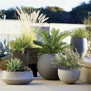 17 meilleures idees a propos de pots de plantes d for Deco entree de maison 8 plante dinterieur originale les bonnes idees cate maison