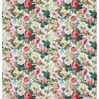 Sanderson Fabric Fabrics Chelsea Autumn Prints Pink