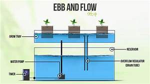 How To Make A Diy Ebb And Flow Hydroponic System  5 Steps