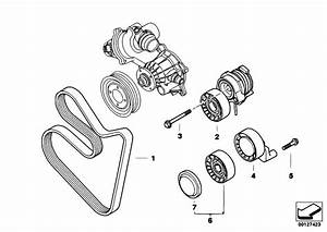 Original Parts For E70 X5 4 8i N62n Sav    Engine   Belt