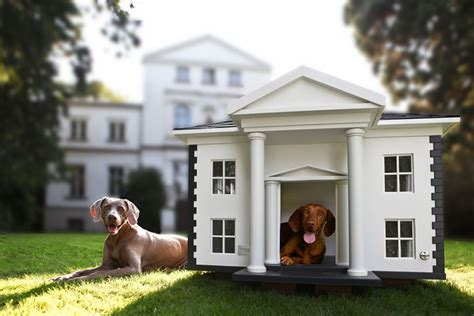 ultimate luxurious dog houses