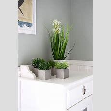 Pflanzen Für Badezimmer – Home Sweet Home