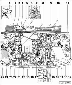 2001 Vw Cabrio Engine Diagram