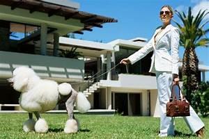 Hotel Pour Chien : h tels de luxe pour chiens nouvelles ~ Nature-et-papiers.com Idées de Décoration