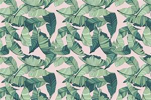 Pink and Green Tropical Leaf Wallpaper | Murals Wallpaper