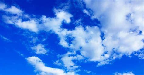 terbaru  wallpaper biru images rumputilalang biru