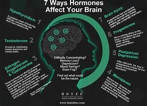 7 Ways Hormones Affect Your Brain