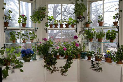 window gardens november giveaway 50 spending spree at logees