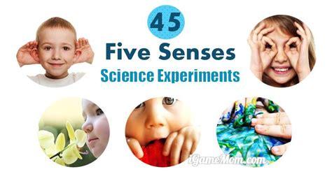 science activities  kids  learn   senses