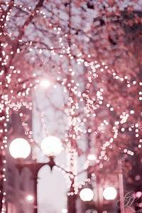 1000+ images about Fairy Lights on Pinterest