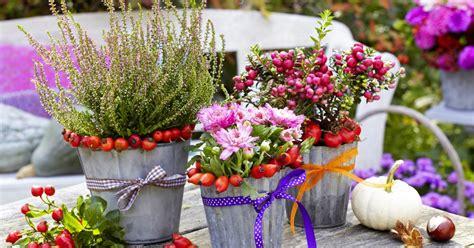 Garten Pflanzen Im Herbst by Herbst Pflanzen Und Deko F 252 R Balkon Und Terrasse Mein