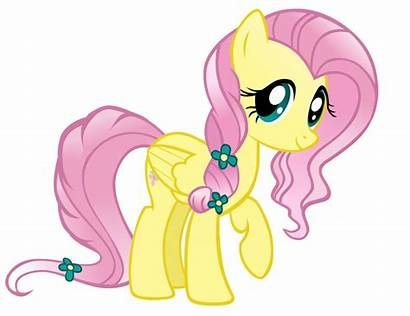 Pony Crystal Fluttershy Ponies Friendship Magic Mlp