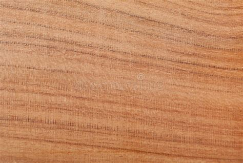 almond wood almond wood texture royalty free stock images image 20409699
