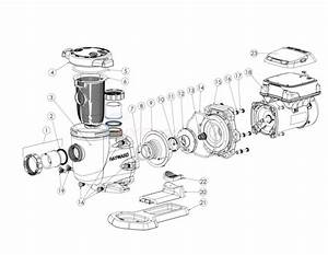 Hayward Tristar Vs Pump Sp3200vsp Series Parts