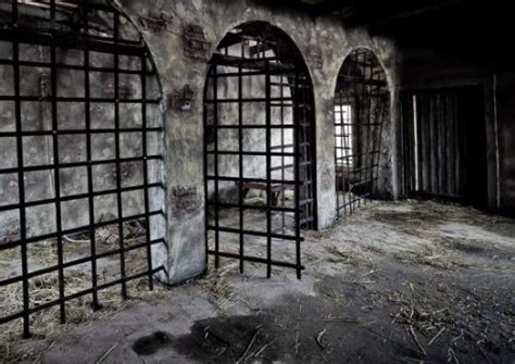 prisons  bars cells  walls feathercage