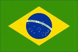 Résultat d'images pour drapeau BRESIL
