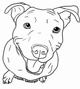 Pitbull clipart outline - Pencil and in color pitbull ...