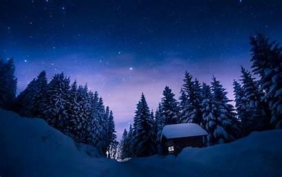 Forest Night Winter Starry Sky Desktop Road