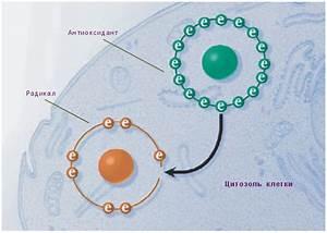 Апитерапия гипертонии