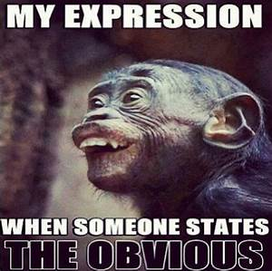 Stating The Obvious | Funny Pictures, Quotes, Memes, Jokes